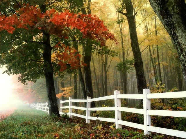 AAA Fence Master Fence White Wood Fence