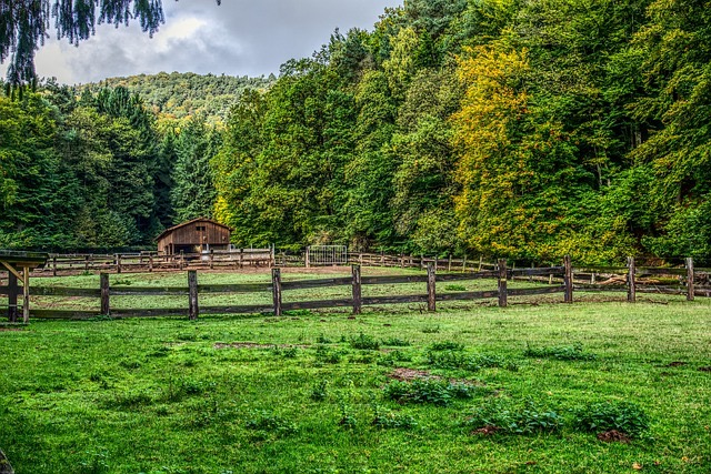 aaafencemaster.com - wood fence with pasture-